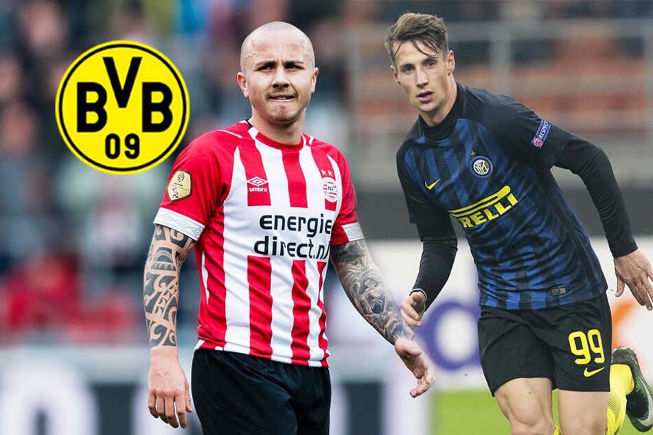 BVB jagt Sturmjuwel von Inter Mailand! Kommt auch PSV-Kämpfer?
