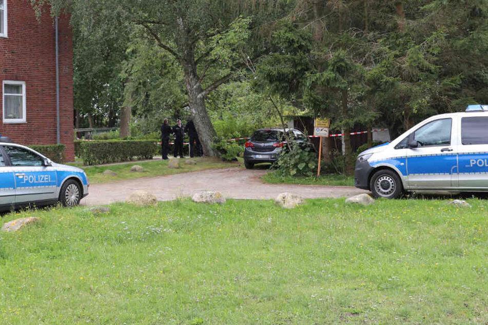 Tochter entdeckt Leichen in Kleingarten: Sanitäter im Verdacht