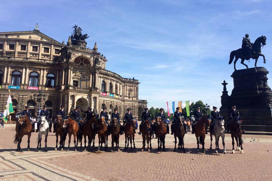 14 Pferde posierten mit ihren Reitern am Dienstag für ein Foto.