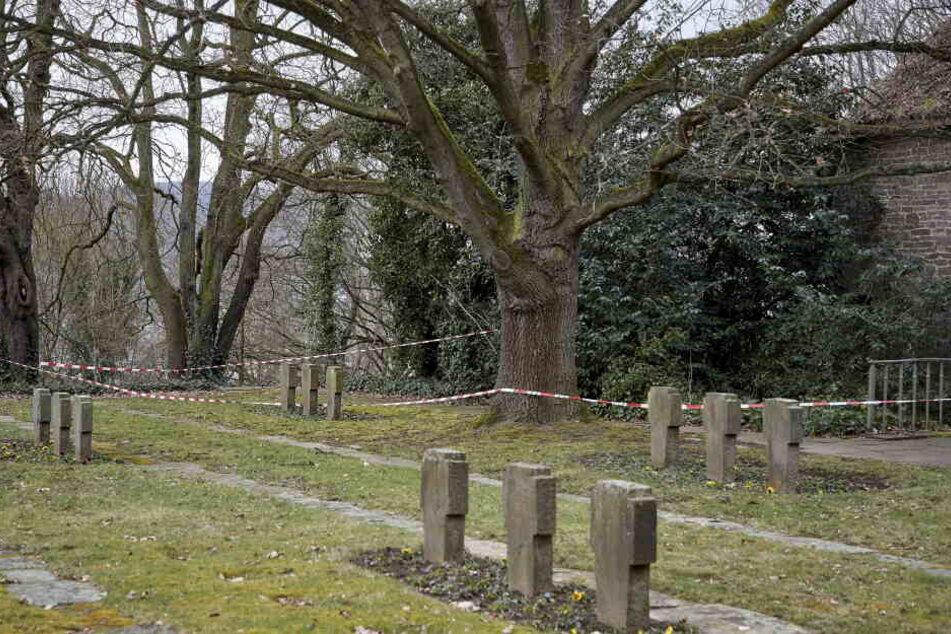 Die enthauptete Leiche des Obdachlosen wurde auf dem Koblenzer Hauptfriedhof aufgefunden.