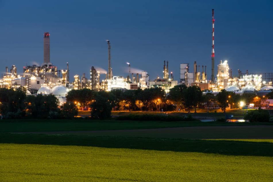 Der Chemiekonzern BASF liegt direkt am Rhein.