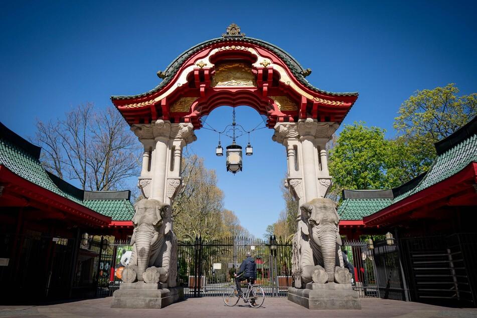 Der Berliner Zoo darf am Dienstag wieder öffnen.