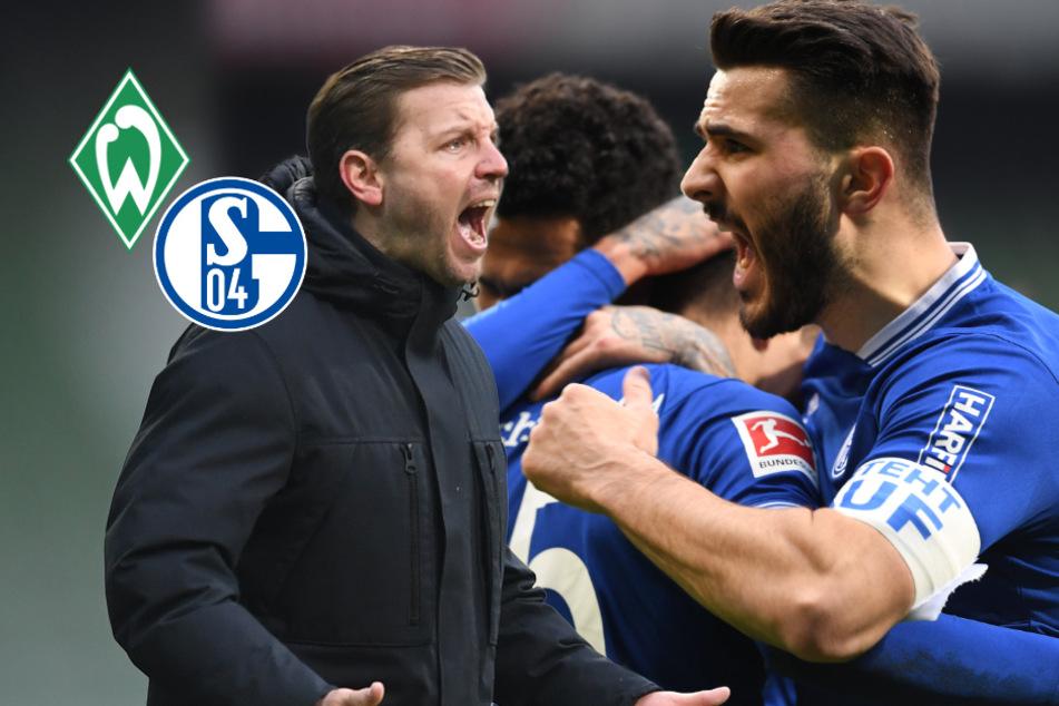 75 starke Minuten reichen Schalke nicht! Schlusslicht zittert sich in Bremen zu Remis