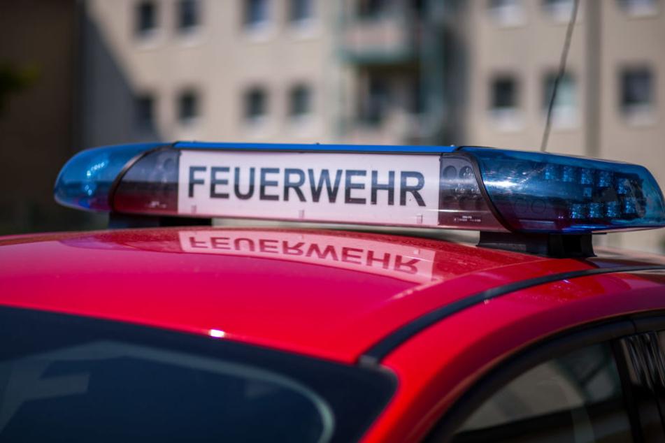 Die Leipziger Feuerwehr musste in der Nacht zu Sonntag ins Waldstraßenviertel ausrücken (Symbolbild).