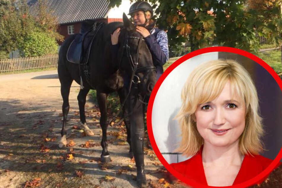 Schlimmer Unfall: MDR-Moderatorin Anja Koebel von Pferd verletzt