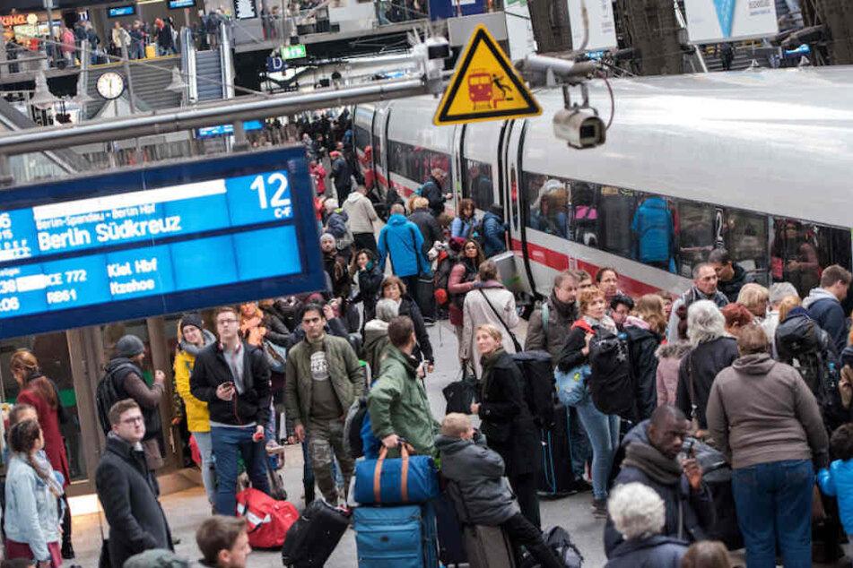 Im Getümmel des Berliner Hauptbahnhofs stand die Tasche mit der Schildkröte darin.