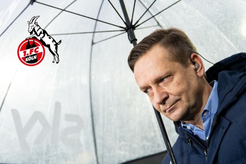 Horst Heldt ist neuer Sportchef beim 1. FC Köln, Trainer steht ebenfalls fest
