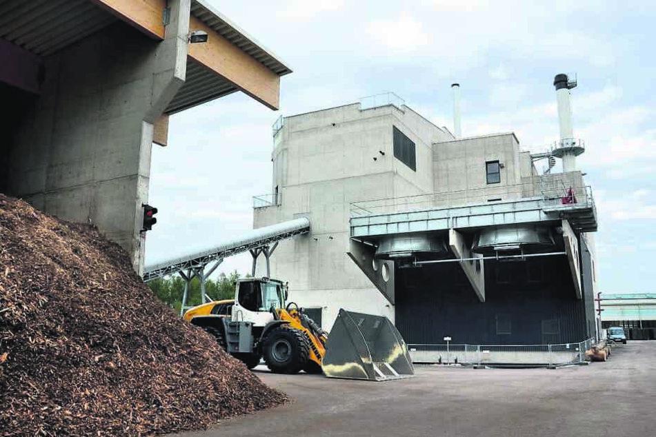 Biomassekraftwerk Ramingdorf in Österreich: Eins Energie will auch in Chemnitz Holz verbrennen.