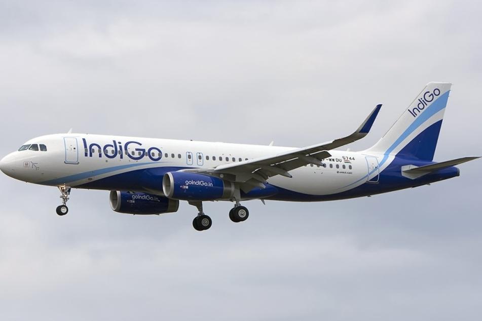 """Die Billig-Airline """"IndiGo"""" macht Schluss mit quengelnden Kindern an Bord. In einigen Reihen wurden sogenannte """"kinder-freie Ruhezonen"""" eingerichtet."""