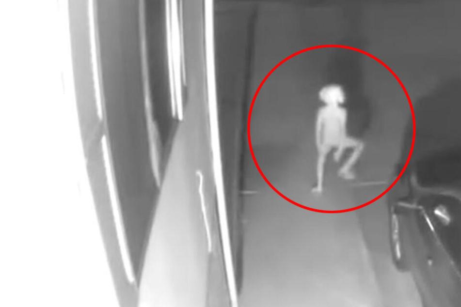 Kind, Alien oder Dobby der Elf? Was ist das?