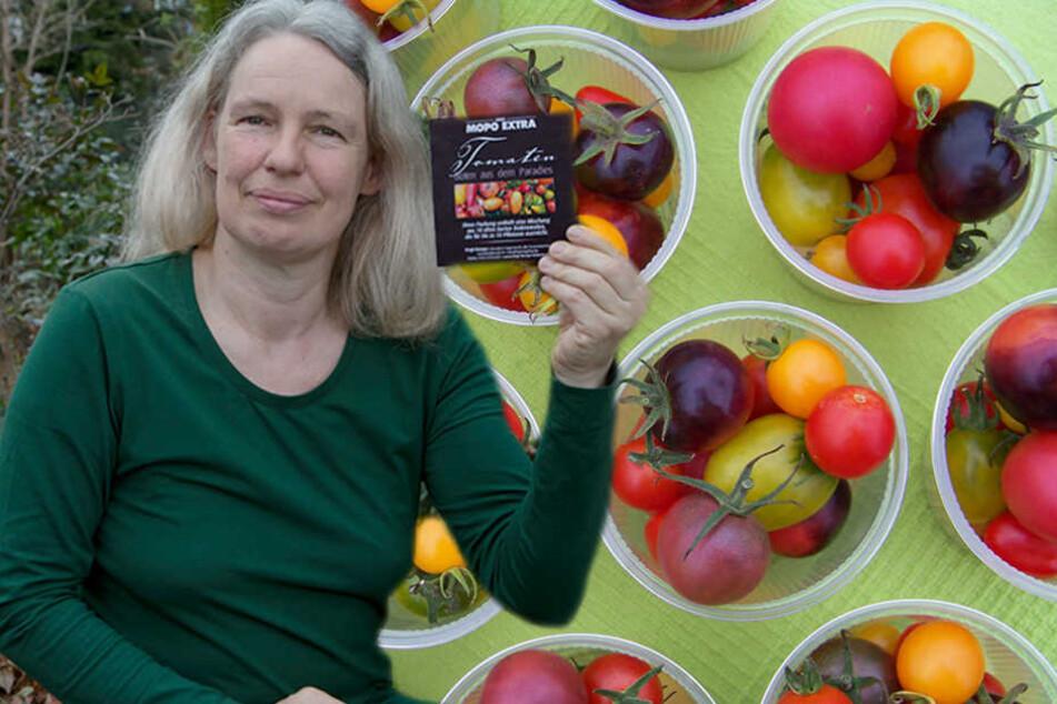 Tomaten-Fans: So kommt Ihr ganz einfach an Eure eigene Pflanzen