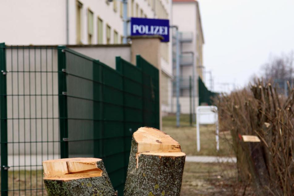 Schon Anfang 2018 wurden rund um das künftige Abhörzentrum in Leipzig Hunderte Bäume und Sträucher gefällt - aus Angst vor Anschlägen.