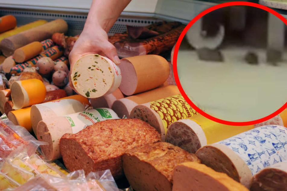 Die Mäuse wurde von einer Besucherin des Thüringenpark auf Video festgehalten. (Bildmontage)