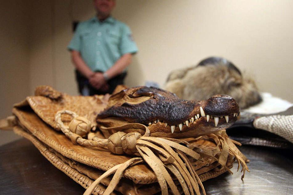 Krokodilköpfe, Schlangenleder-Stiefel, Pelze von vom Aussterben bedrohten Tieren... Es gibt nichts, was der Zoll nicht schon gesehen hätte.