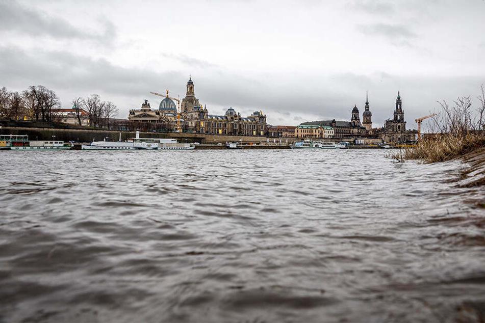 Ganz anders als im Trocken-Sommer: Die Elbe in Dresden führt wieder gut Wasser.