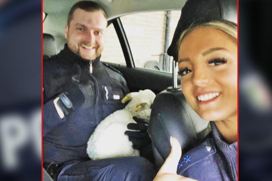 Zwei Beamte der Polizei Hamburg lächeln auf einem Selfie mit dem entflohenen Lamm.