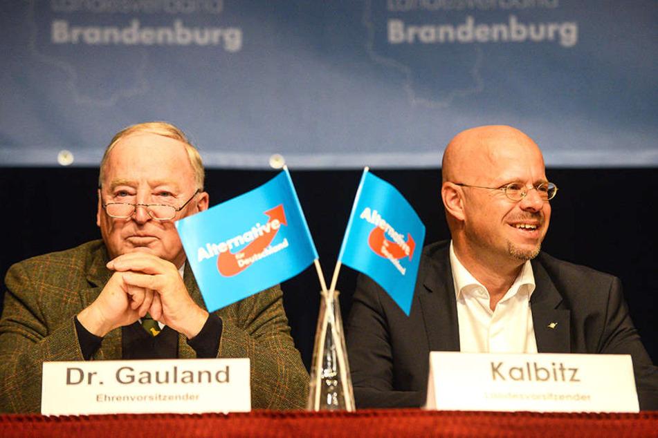 AfD-Chef Alexander Gauland (77) neben dem Landesvorsitzenden Andreas Kalbitz (45).