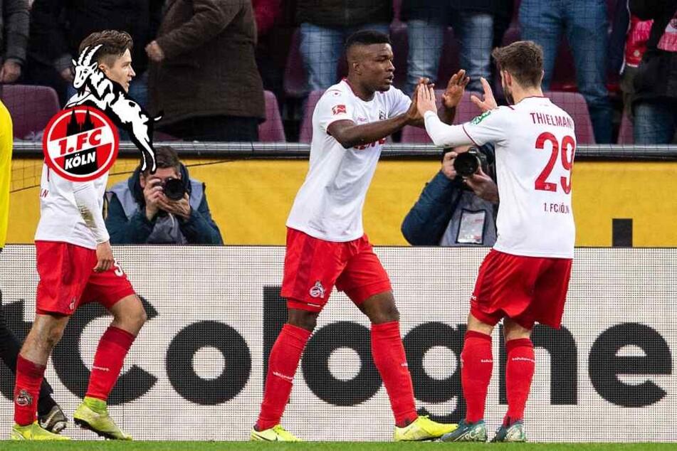 1. FC Köln: Acht Fakten zur Hinrunde