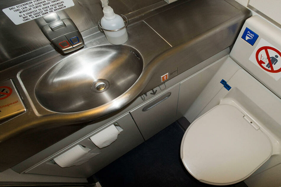 In einem Flugzeug wurde eine kleine Wasserschildkröte in der Bordtoilette gefunden. (Symbolbild)