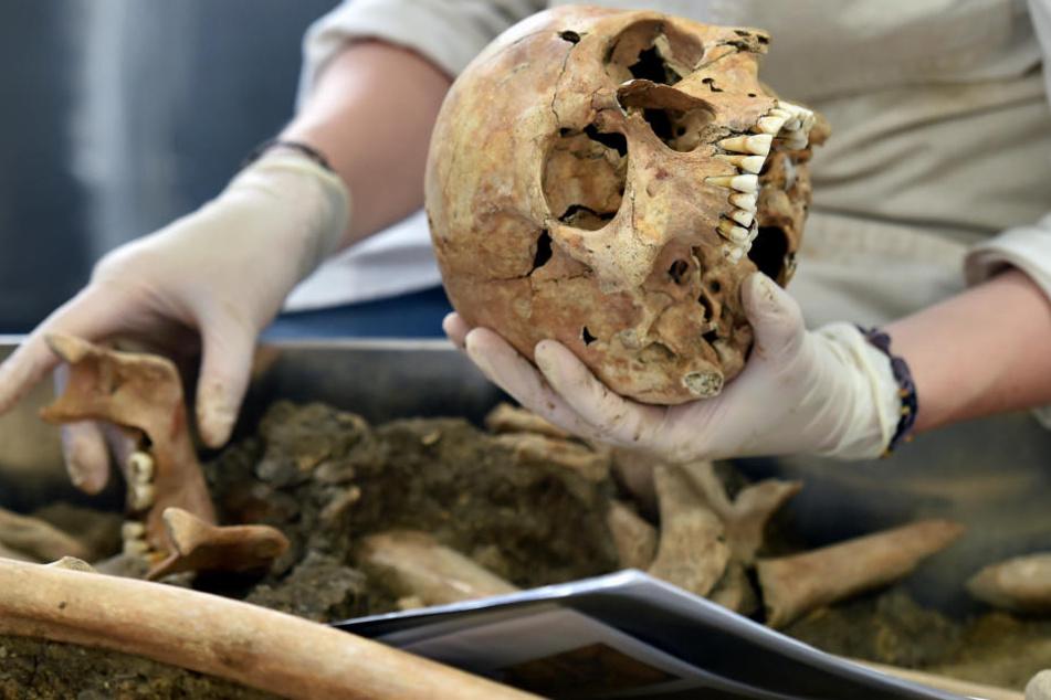 Mithilfe einer DNA-Analyse wurde das tausend Jahre alte Skelett untersucht. (Symbolbild)
