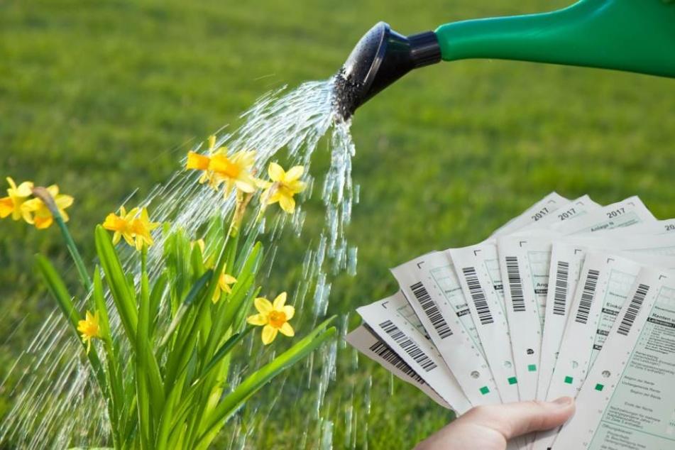 Hohe Gießwasserkosten können unter Umständen auf die Abwassergebühren angerechnet werden (Symbolbild).