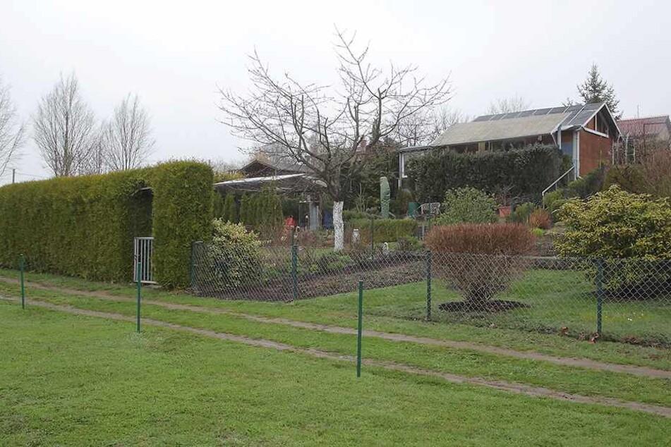 "Die Kleingartensparte ""Am Hofeberg"" in Dürrröhrsdorf-Dittersbach."