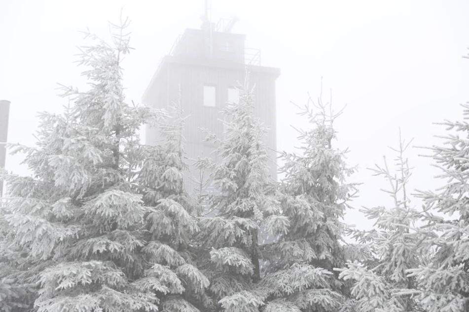 Neblig und einige Zentimeter Neuschnee: So sieht es aktuell auf dem Fichtelberg aus.