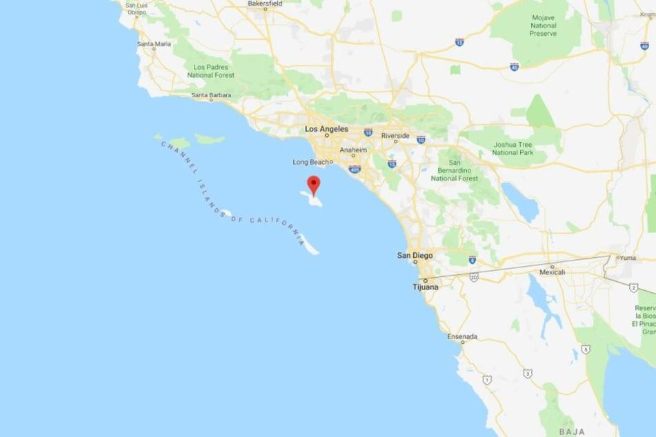 Catalina Island, an der Westküste der USA. Hier kommt es immer Häufiger zur Sichtung von weißen Haien.