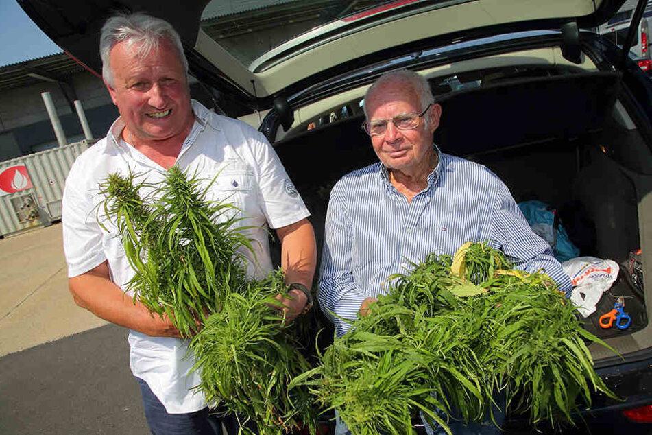 Norbert Schmidbauer (l.) und Heinz Friedrich Schönleber beraten das nordamerikanische Unternehmen beim Anbau von Cannabis.