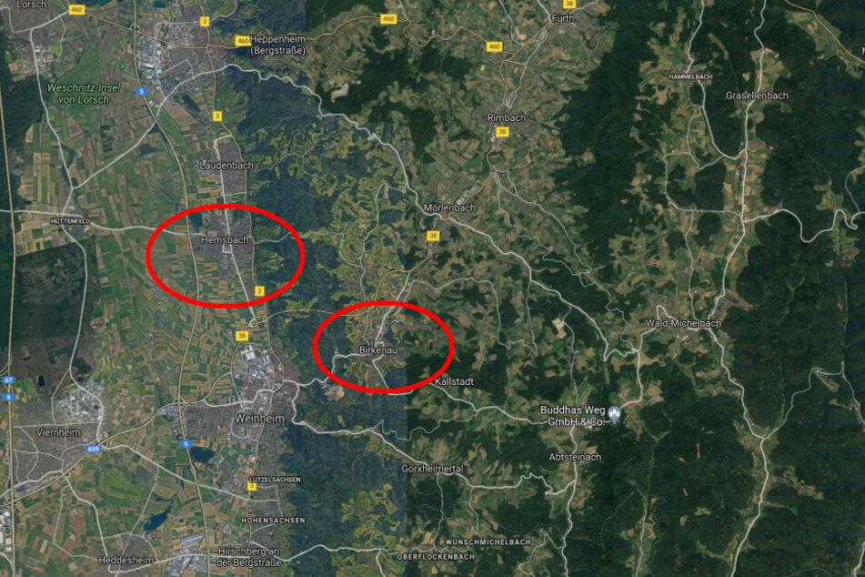 Die beiden Vermissten hatten bei Birkenau gezeltet. Eine Zeugin will die beiden beim nehe gelegenen Hemsbach gesehen haben.