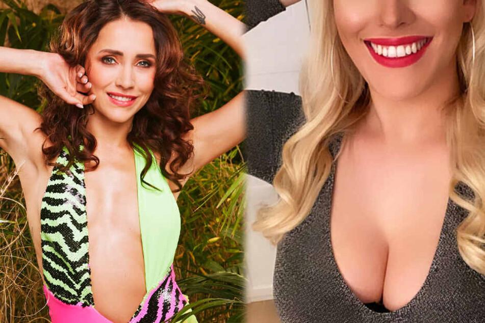 Dschungelcamp: Sexy Blondine will Anastasiya in der nächsten Dschungel-Prüfung sehen