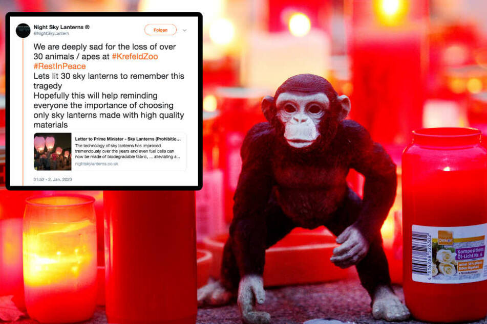Tödlicher Brand im Zoo Krefeld: Laternen-Firma provoziert fies per Twitter