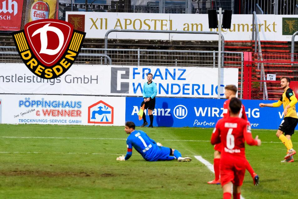 """Dynamo: Phänomenal! Bei Sohm ist """"der Groschen gefallen"""""""