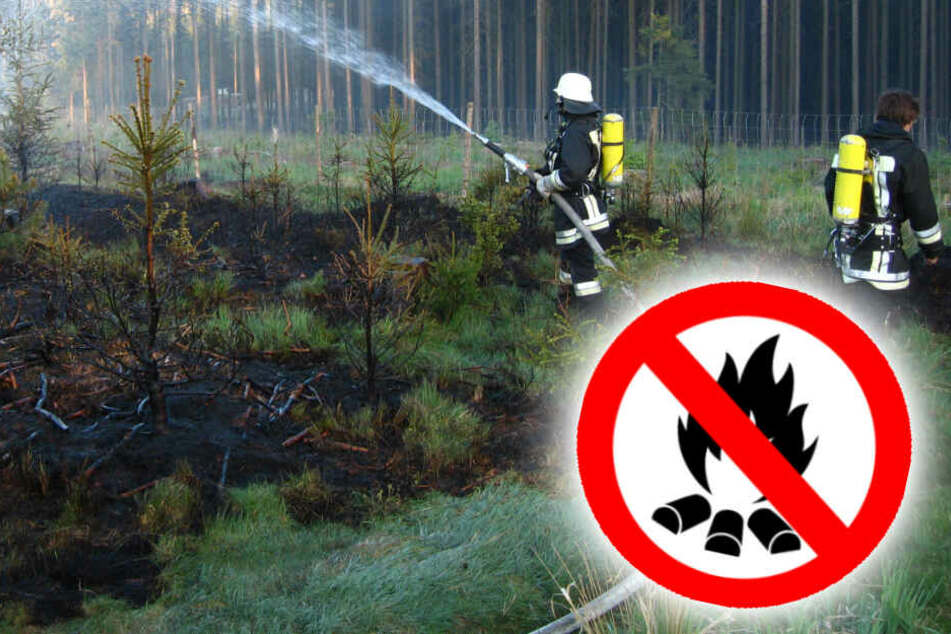 Das bayerische Forstministerium warnt vor der erhöhten Waldbrandgefahr in Bayern.