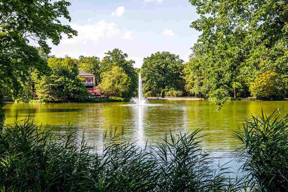 Der Carolateich ist einer der beliebtesten Ausflugsziele im Park. Aber er wird derzeit weniger.