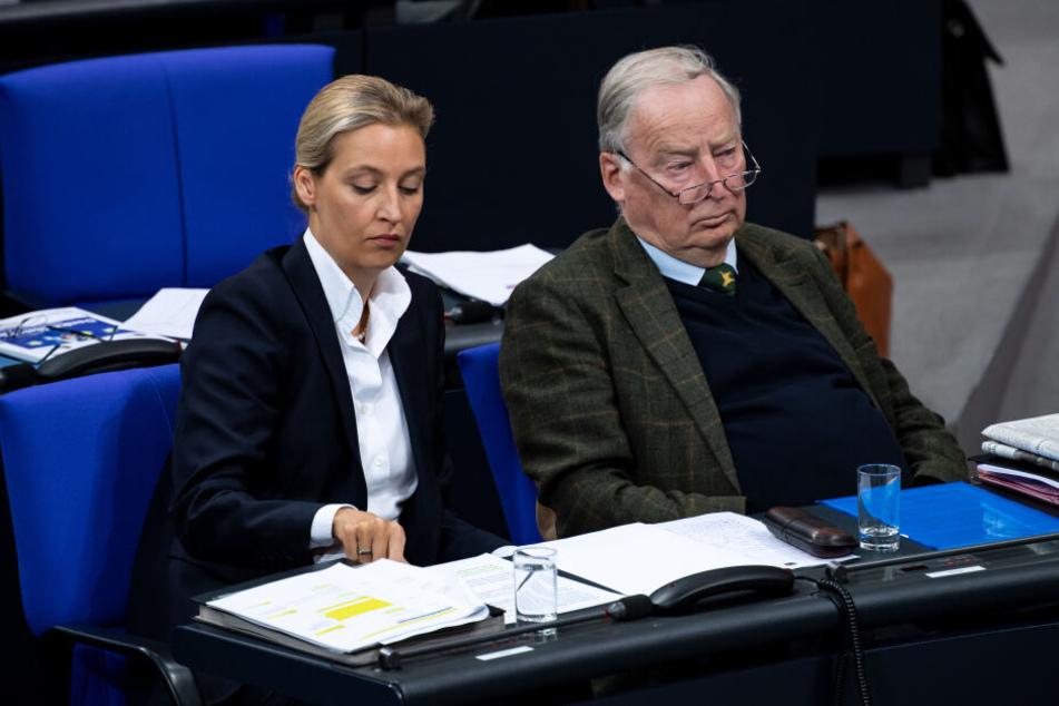 Alice Weidel und Alexander Gauland (beide AfD) hetzen gegen Ausländer.