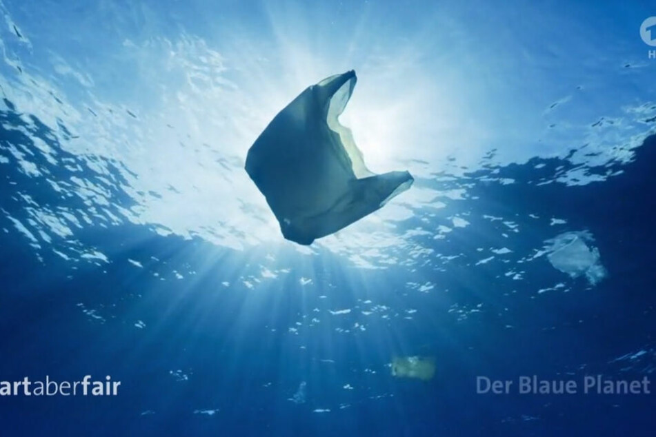 """Montags zeigt die ARD die BBC-Serie """"Unser blauer Planet"""" beeindruckende Bilder in HD."""
