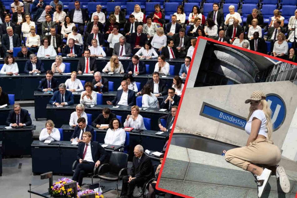 """""""Doggy ist ihr Hobby"""", auch vor dem Bundestag."""