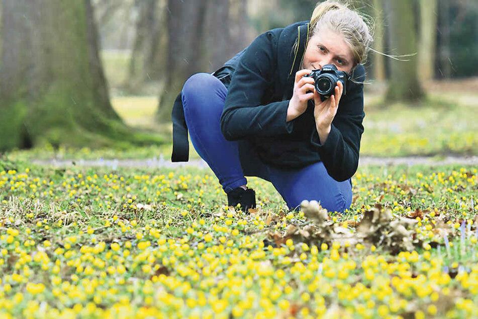 Eine Wiese voller Winterlinge dient Christina (21) als Frühlingsmotiv.