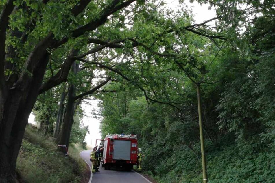 Die Feuerwehren Nerchau und Grimma waren vor Ort, um den Schaden zu beheben.