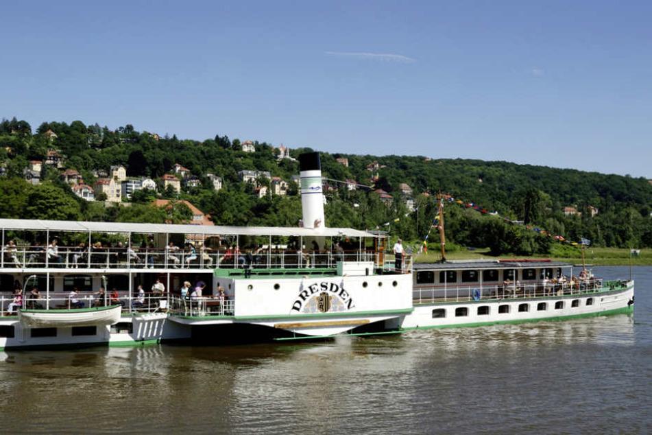 Ein Urlaubshit beim Dresdenbesuch: Raddampferfahrt auf der Elbe.