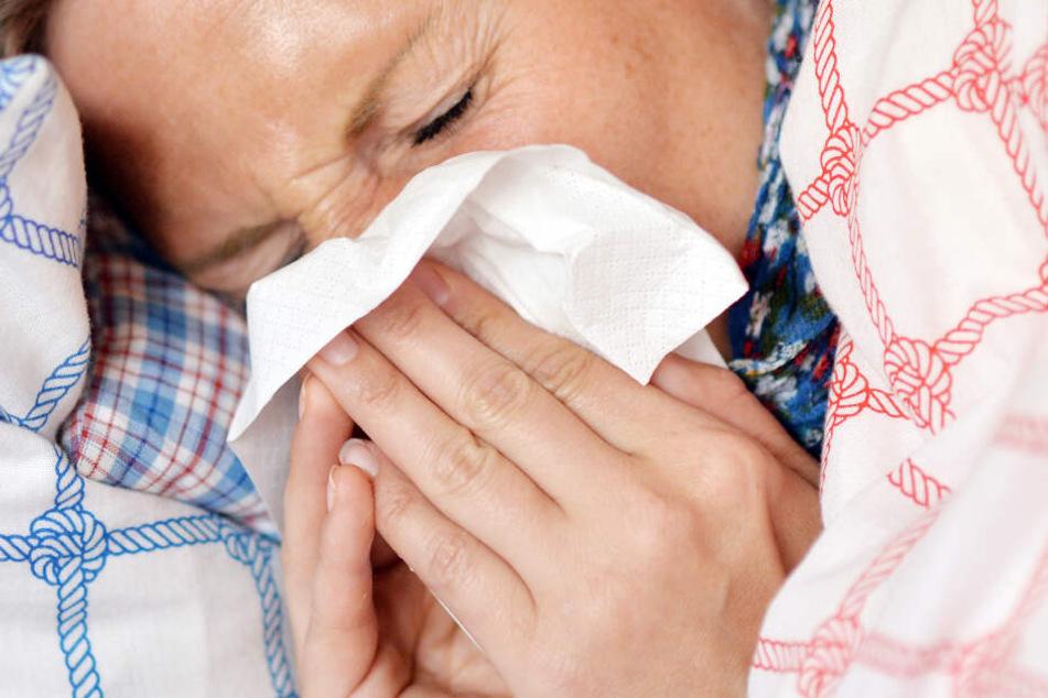 Q-Fieber ausgebrochen! 27 Leute erkrankt