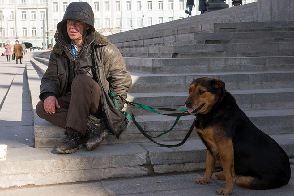 Die Hunde sollen das Herz der Wiesn-Besucher erweichen - und die Brieftasche öffnen.