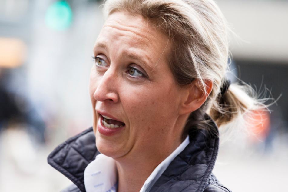 Bundestagsfraktionschefin der AfD, Alice Weidel (41).