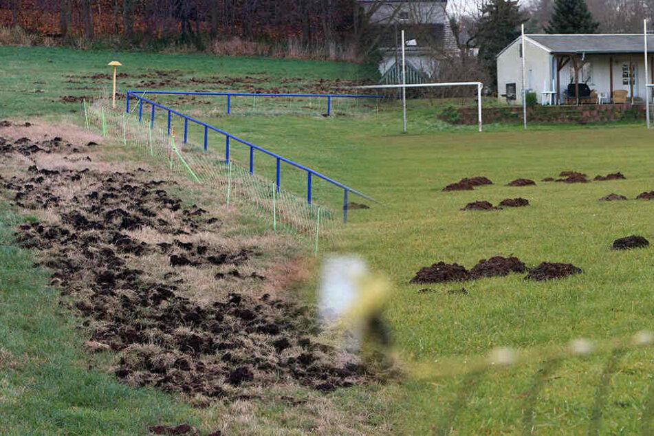 Auf diesem sächsischen Fußballplatz lauert die Gefahr unter der Erde