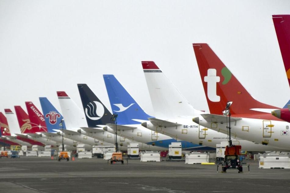 Flugzeuge diverser Airlines am Boden.