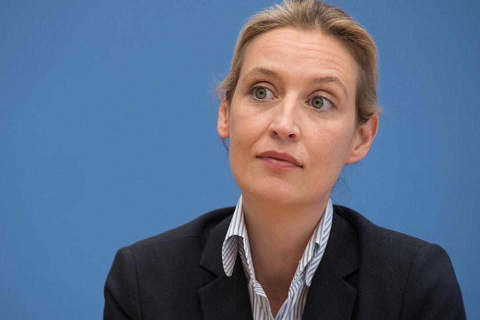 Die Spitzenkandidatin der Partei Alternative für Deutschland (AfD), Alice Seidel während einer Pressekonferenz über die Landtagswahl in Schleswig-Holstein.