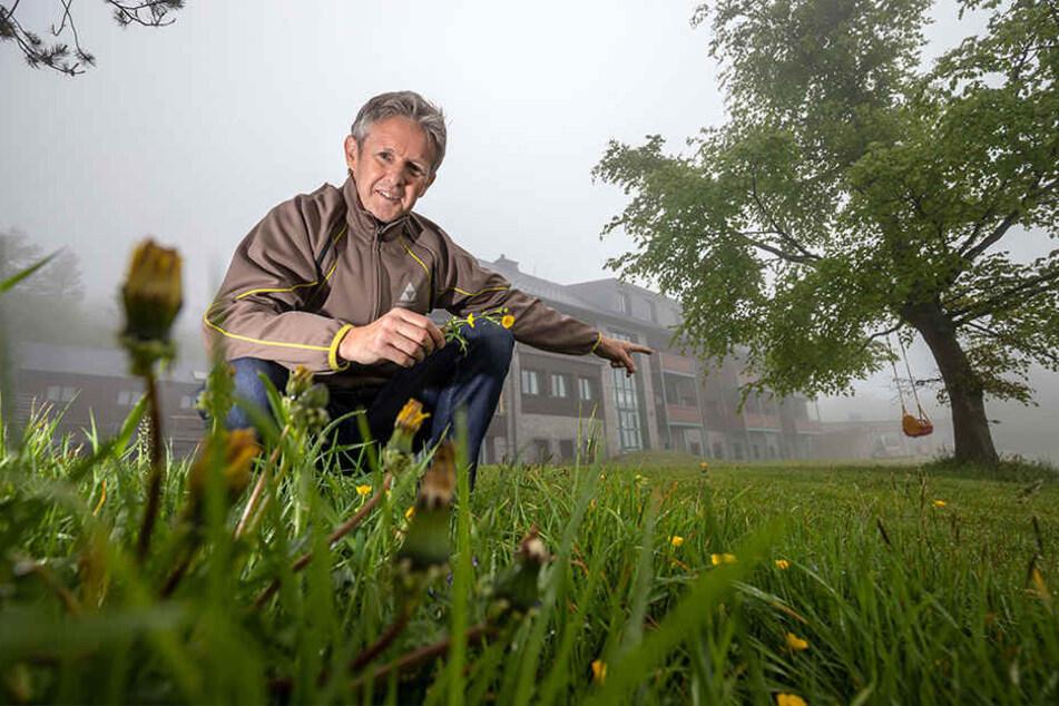 Der Hausmeister ist im Urlaub. Deswegen muss Schanzenfloh Jens Weißflog (53) insgesamt zwei Hektar Rasen selber mähen.