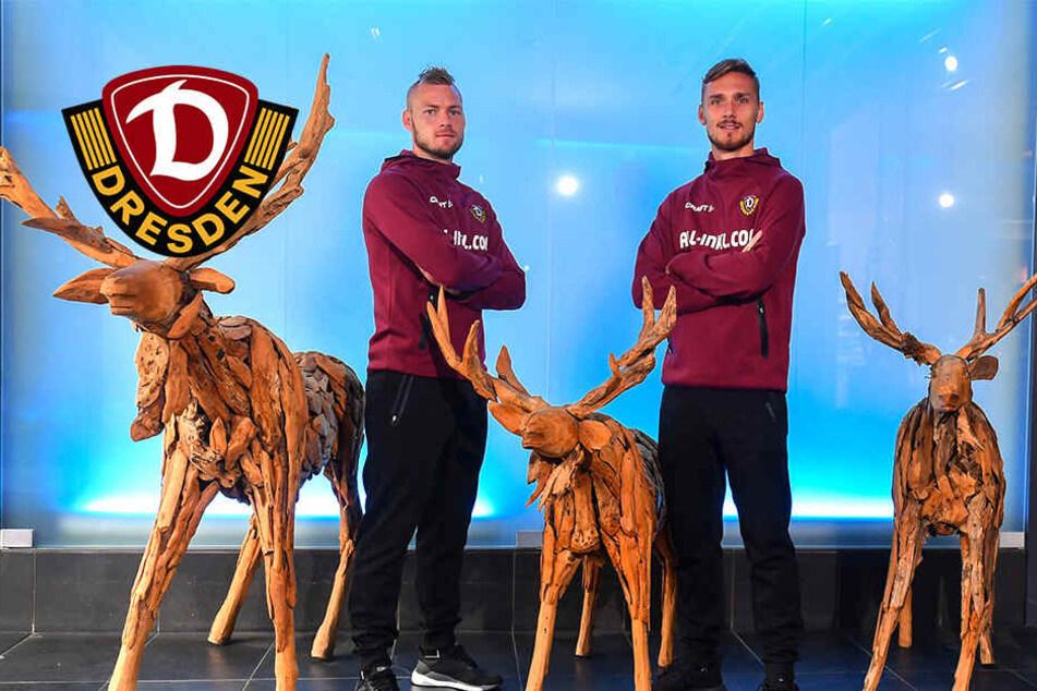 Skandinavien-Duo will bei Dynamo noch mehr den Ton angeben!