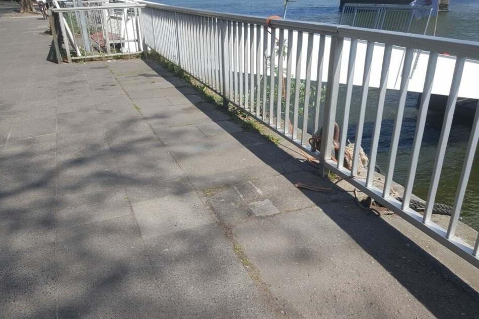 Das alte Pflaster und das alte Geländer am Rhein.